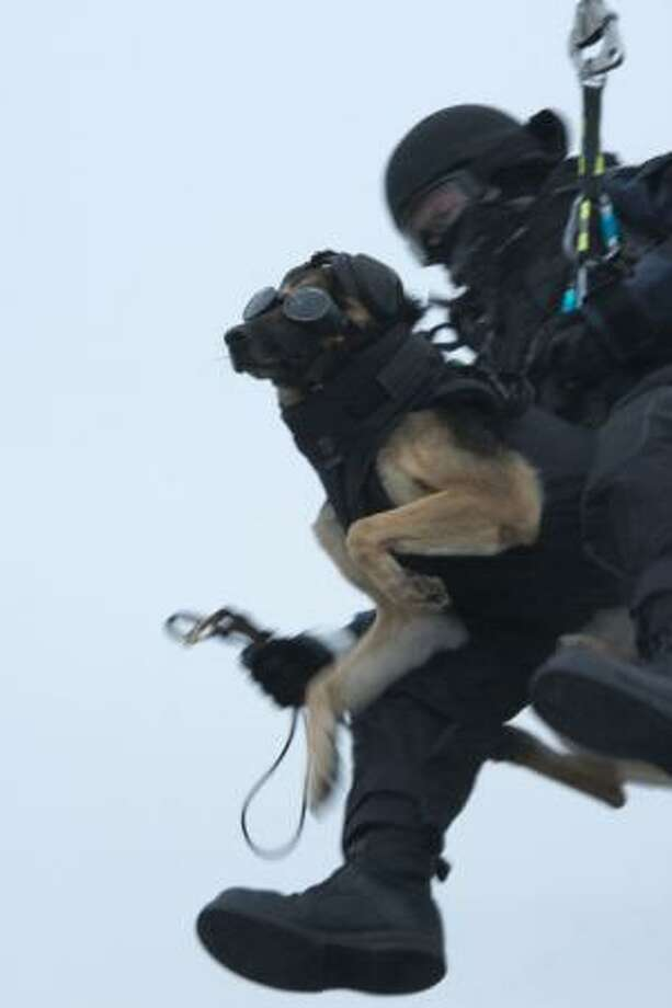A Coast Guard K-9 handler from the Marine Safety and Security Team in 