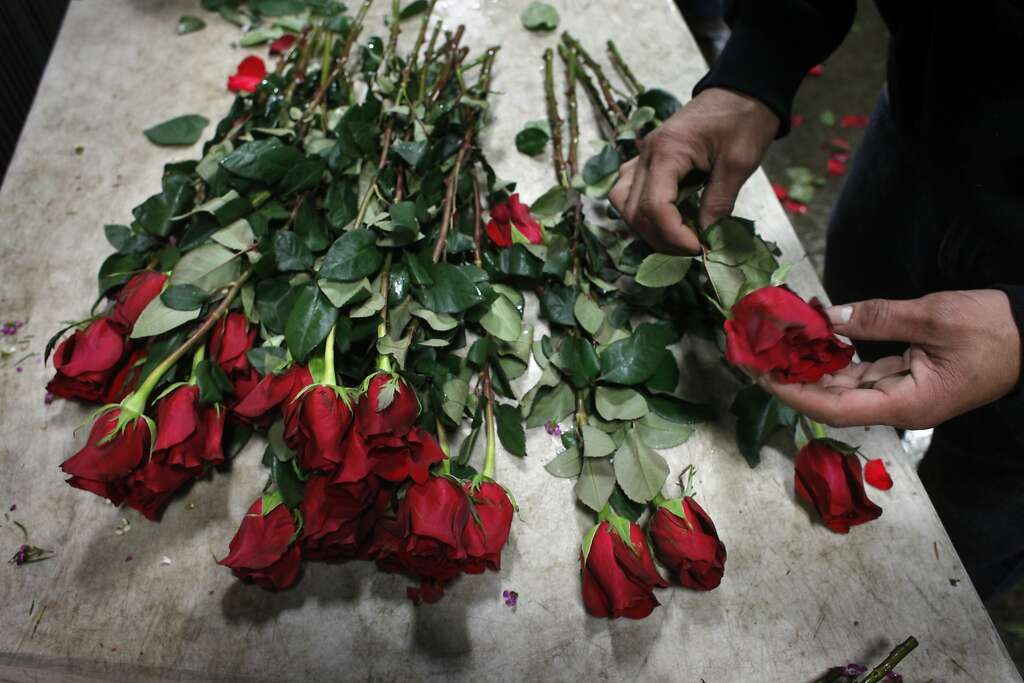 valentine's day: price gougingthe flower cartel - sfgate, Ideas