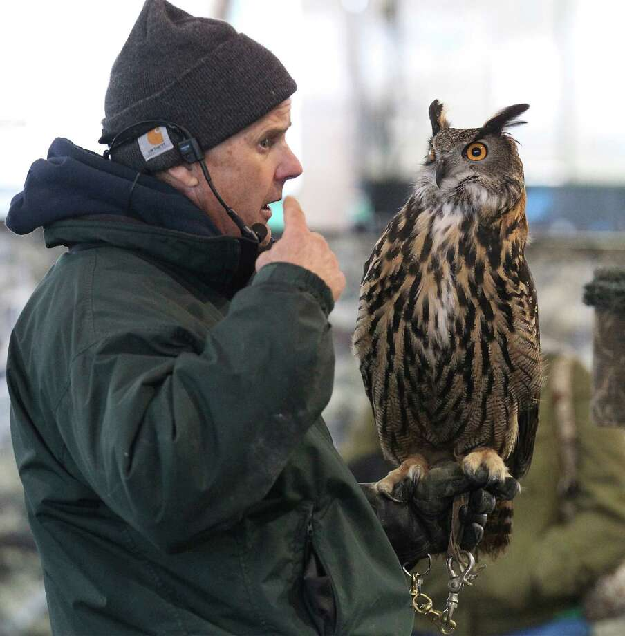 Exhibitor Jonathan Wood of The Raptor Project displays an Eagle Owl during the raptor and birds of prey show at the 2014 San Antonio Stock Show and Rodeo on Tuesday, Feb. 11, 2014. Photo: Kin Man Hui, San Antonio Express-News / ©2013 San Antonio Express-News