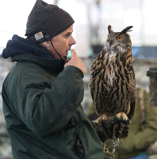 Exhibitor Jonathan Wood of The Raptor Project displays an Eagle Owl during the raptor and birds of p