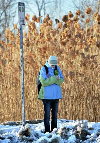 UAlbany student Natasha Scully endures a cold wait at a CDTA bus stop on Wolf Road Tuesday afternoon, Feb. 11, 2014, in Colonie, N.Y.  (John Carl D'Annibale / Times Union) Photo: John Carl D'Annibale