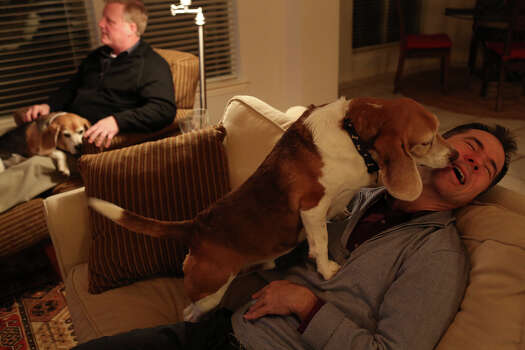 Victor Holmes, right, gets kisses from Jake while Mark Phariss watches a movie with Betsy in his lap at their home in Plano on Friday, Feb. 7, 2014. Photo: Lisa Krantz, San Antonio Express-News / San Antonio Express-News