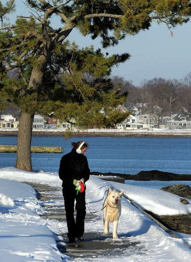 Rebecca Ives, of Milford, walks her dog Bear along Ovean Avenue in the Woodmont section of Milford,