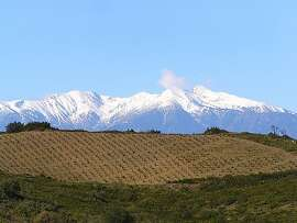 Vines planted on schist at Domaine Gauby, near Calce, France, in the Roussillon area. Mont Canigou, which reaches a peak of 2714m, is in the background.
