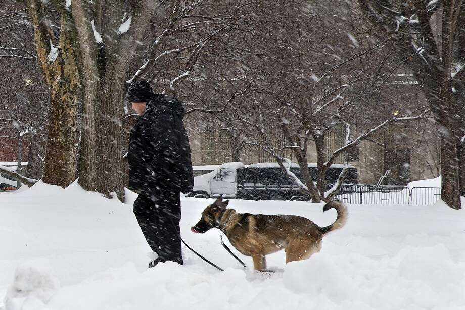 A Secret Service K-9 unit does a security sweep in the falling snow in Lafayette Park across from the White House in Washington, Thursday, Feb. 13, 2014. After pummeling wide swaths of the South, a winter storm dumped nearly a foot of snow in Washington as it marched Northeast and threatened more power outages, traffic headaches and widespread closures for millions of residents. Photo: Jacquelyn Martin, Associated Press