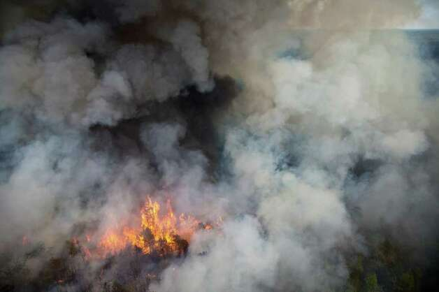 Fire consumes a forest as a wildfire burns on Tuesday, Sept. 6, 2011, near Magnolia, Texas. Photo: Smiley N. Pool, Houston Chronicle / © 2011  Houston Chronicle
