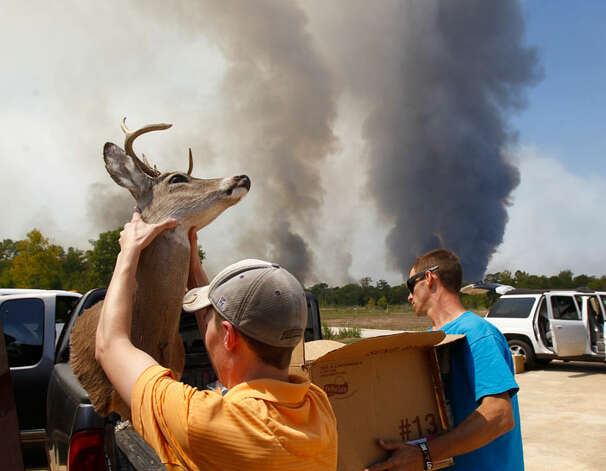David Courtney, front and his friends take all of his  valuables from his home as changing winds bring a wildfire closer, Tuesday,  Sept. 6, 2011, in Montgomery County. ( Nick de la Torre / Houston Chronicle )