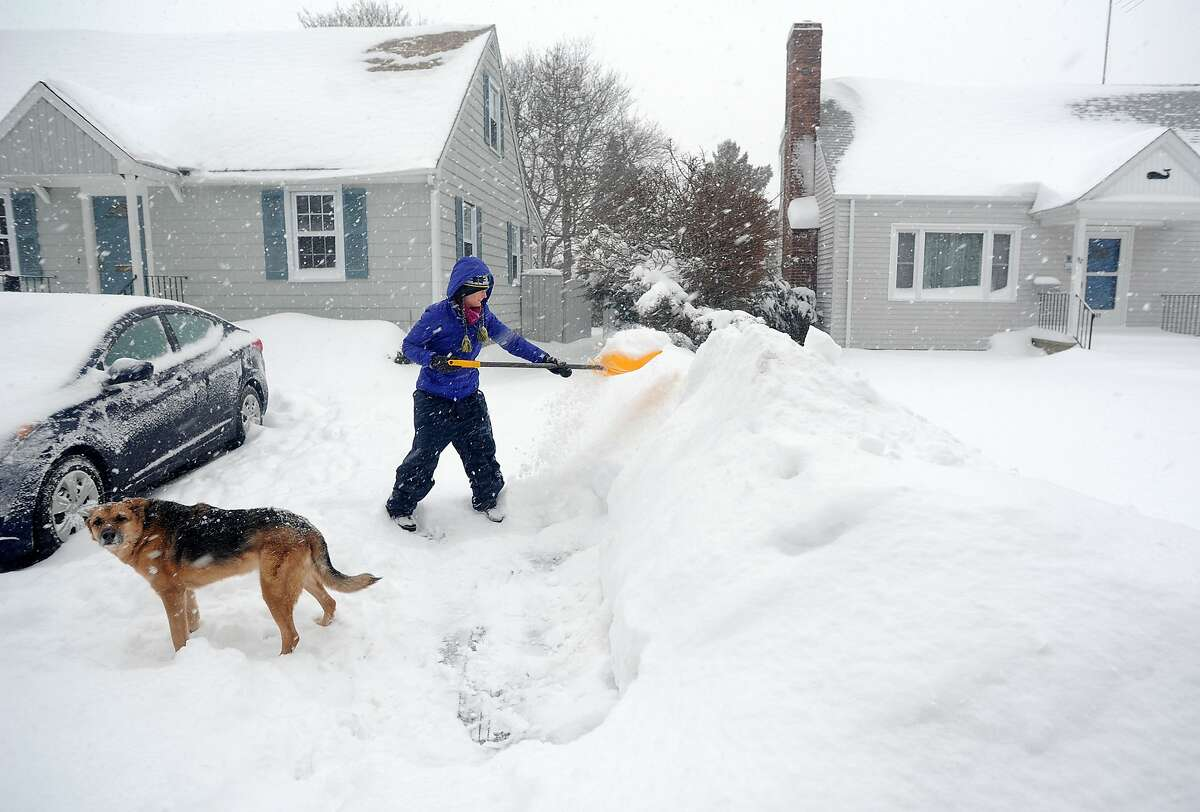 Under the watchful eye of the family dog, farley, Joanna Jennens trys to keep up with the storm as she shovels her driveway on Gould Ave. in Fairfield, Conn. on Thursday, Feb. 13, 2014. Jennens just moved to town from Michigan in July, so she is used to winter weather.