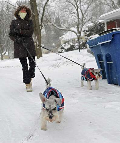 Anne Engster of McKownville walks her dogs Gus and Stewart on Norwood St. Thursday, Feb. 13, 2014, in Albany, N.Y.  (Lori Van Buren / Times Union) Photo: Lori Van Buren / 00025747A