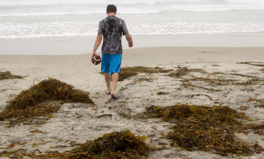 Johnny Manziel walks toward the ocean to train in the water while working out on Mission Beach in preparation for the NFL draft. Photo: Brett Coomer, Houston Chronicle