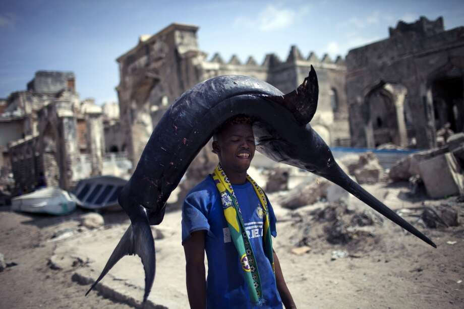 Somalia: A Somali fisherman carries a swordfish from the port to the market in Mogadishu, Somalia. Photo: Jim Lopez, AFP/Getty Images