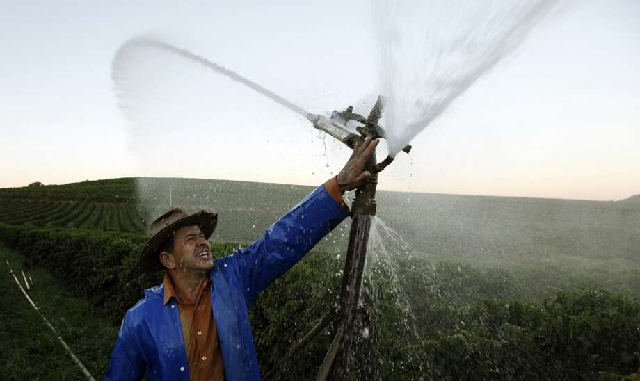 Brazil: Brazilian coffee producer Marcio Diogo adjusts an irrigation system in his farm in Santo Antonio do Jardim February 7, 2014. In Brazil's coffee belt, frost has long been the biggest risk for farmers and commodities traders alike. But after years of migration to warmer confines, farmers here now find themselves scrambling to overcome a unusual threat: blistering heat. January was the hottest and driest month on record in much of southeastern Brazil, punishing crops in the country's agricultural heartland and sending commodities prices sharply higher in global markets. As signs emerged that the world's largest coffee crop was withering, futures prices shot up 26 percent over a seven-day stretch to a nine-month high. Photo: Paulo Whitaker, Reuters