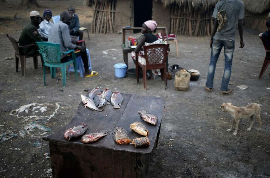 Sudan: Fish are seen at an open air restaurant in a village of a rebel controlled territory in Upper Nile State, February 8, 2014. P Photo: Goran Tomasevic, Reuters