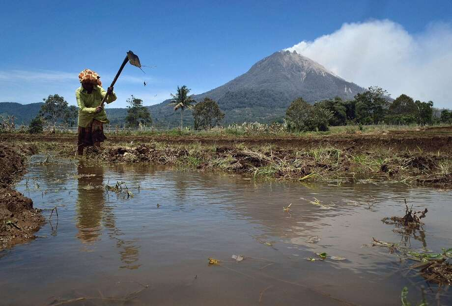 Indonesia: A resident works on a farm as smoke billows from Mount Sinabung (background) in Karo district, Sumatra island. Photo: Sutanta Aditya, AFP/Getty Images