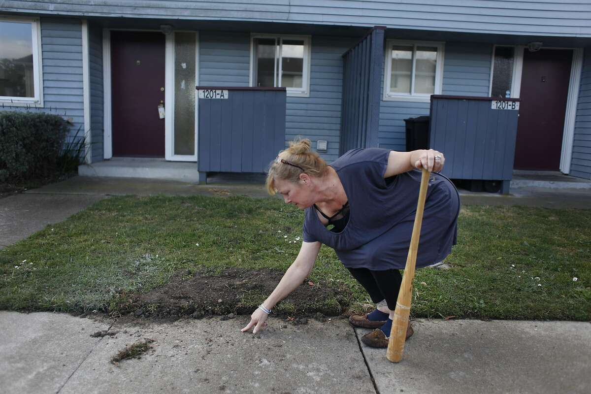 Kathryn Lundgren points next to a spot where a hole had been dug and a radioactive dial removed the week before on Monday, February 3, 2014 on Treasure Island in San Francisco, Calif.
