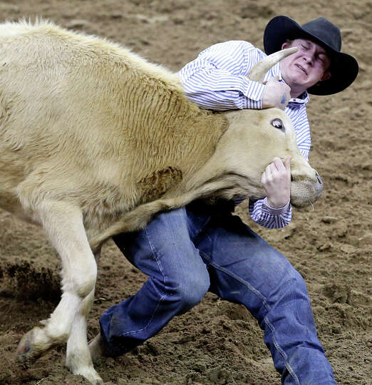 Ty Erickson, of Helena, MT, competes in the steer wrestling event during the San Antonio Stock Show
