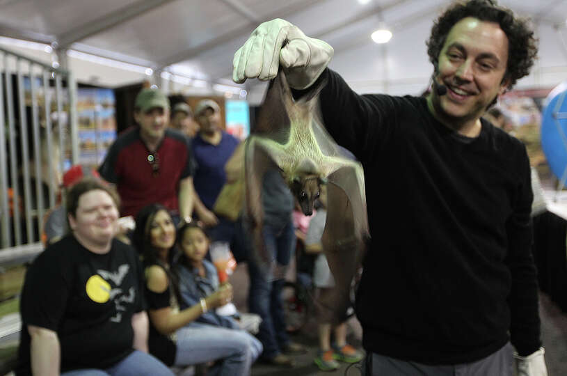 Organization for Bat Conservation Executive Director Rob Mies holds a straw colored flying fox durin