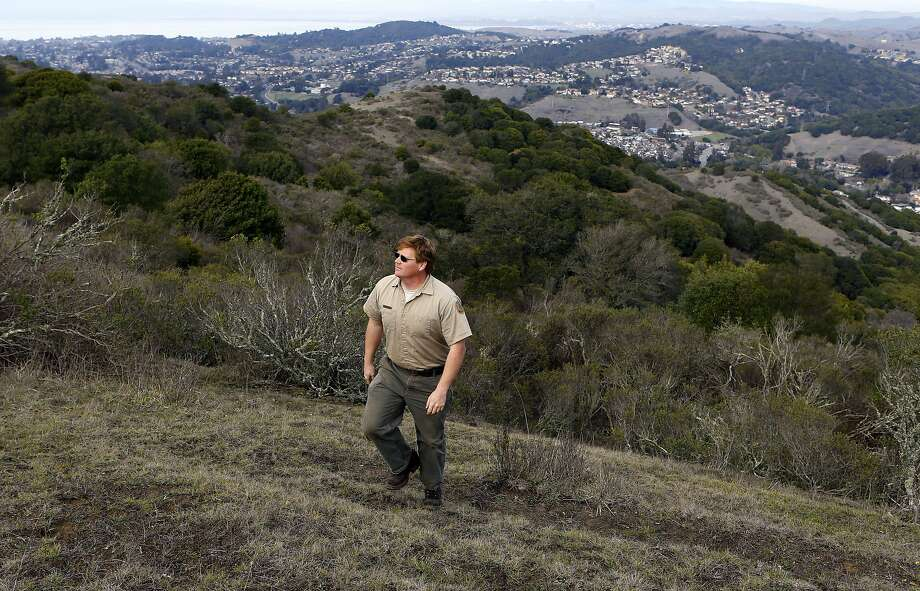 Wildcat Canyon Regional Park supervisor Justin Neville walks in the hills above the new parkland, which borders El Sobrante and Richmond. Photo: Michael Macor, The Chronicle
