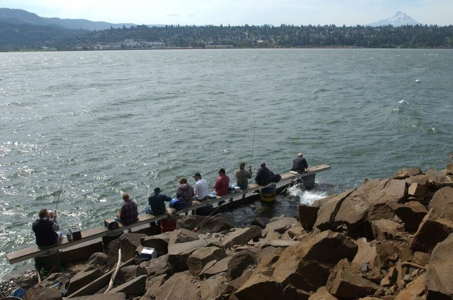 More on the Columbia Gorge: Get up early and go fishing during salmon season. Photo: JEFF LARSEN, SEATTLE POST-INTELLIGENCER