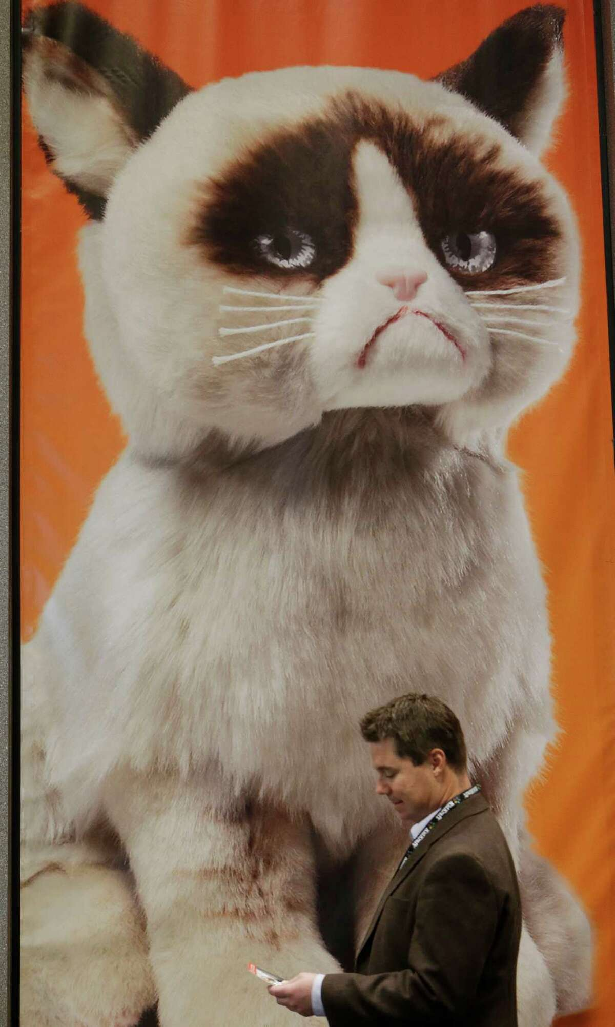 A man passes a Grumpy the Cat display near the Gund booth at Toy Fair 2014 at the Jacob K. Javits Convention Center Sunday, Feb. 16, 2014, in New York. The 111th American International Toy Fair opened in New York Sunday. (AP Photo/Frank Franklin II) ORG XMIT: NYFF109