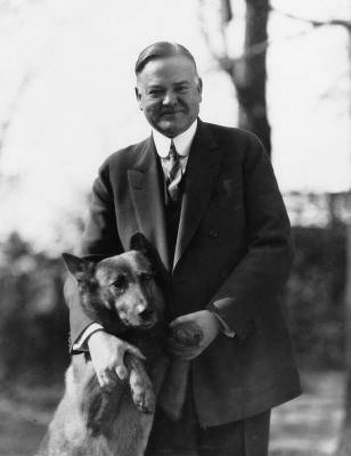 'If a dog will not come to you after he has looked you in the face, you should go home and examine your conscience.' - President Woodrow WilsonAbove: President Herbert Hoover poses with his police dog, King Tut. Autographed pictures of Hoover and his dog were mailed to voters during his campaign. 