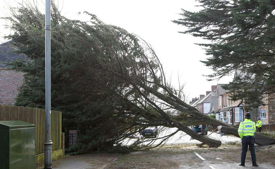 If a tree falls in Egham, England, it does makes a sound,but almost no one heard it due to gale-force winds. More than 140,000 homes lost power in storm-battered Britain. Photo: Justin Tallis, AFP/Getty Images