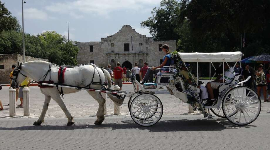 Sam Wells of Bluebonnet Carriage takes people on a horse-drawn ride in front of the Alamo on Saturday, Sept. 11, 2010. Kin Man Hui/kmhui@express-news.net Photo: SAN ANTONIO EXPRESS-NEWS