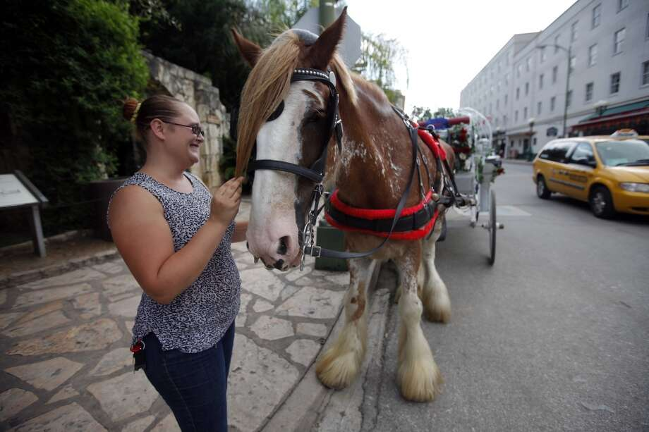 Lone Star Carriage's Amanda Pemberton (left) and her Clydesdale horse, Rocky, wait for rides near the Alamo on Saturday, Sept. 11, 2010. PKin Man Hui/kmhui@express-news.net Photo: SAN ANTONIO EXPRESS-NEWS