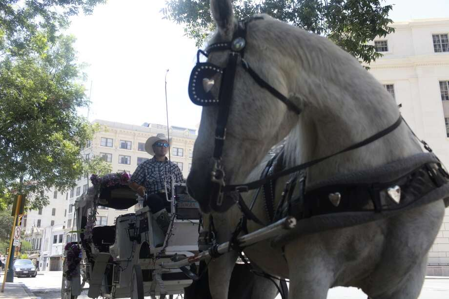 Jonathan Smith, 23 of San Antonio, sits in his carriage with his horse, Susie, in downtown San Antonio on Monday, June 17, 2013. The City Council will vote Thursday whether to change regulations for horse-drawn carriages dealing with maximum temperatures and length of breaks. Photo: San Antonio Express-News