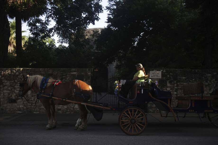 Stephanie McMeans of San Antonio sits in a carriage led by Jed in downtown San Antonio on Tuesday, June 18, 2013. The San Antonio City Council will vote Thursday whether or not to change regulations on carriage horses. Photo: San Antonio Express-News