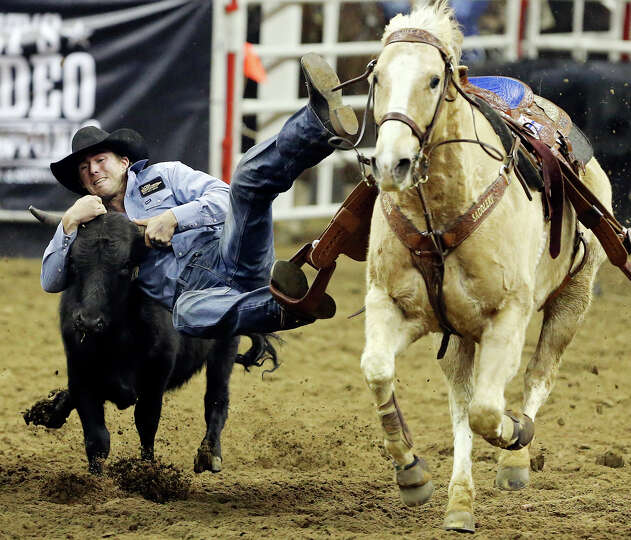 Timmy Sparing, of Helena, MT, competes in the steer wrestling event during the San Antonio Stock Sho