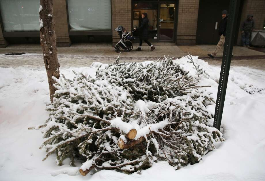 NEW YORK, NY - FEBRUARY 18:  Christmas trees await pickup in the snow on February 18, 2014 in New York City. The city has reportedly received about four feet of snow so far in 2014. (Photo by John Moore/Getty Images) Photo: Getty Images