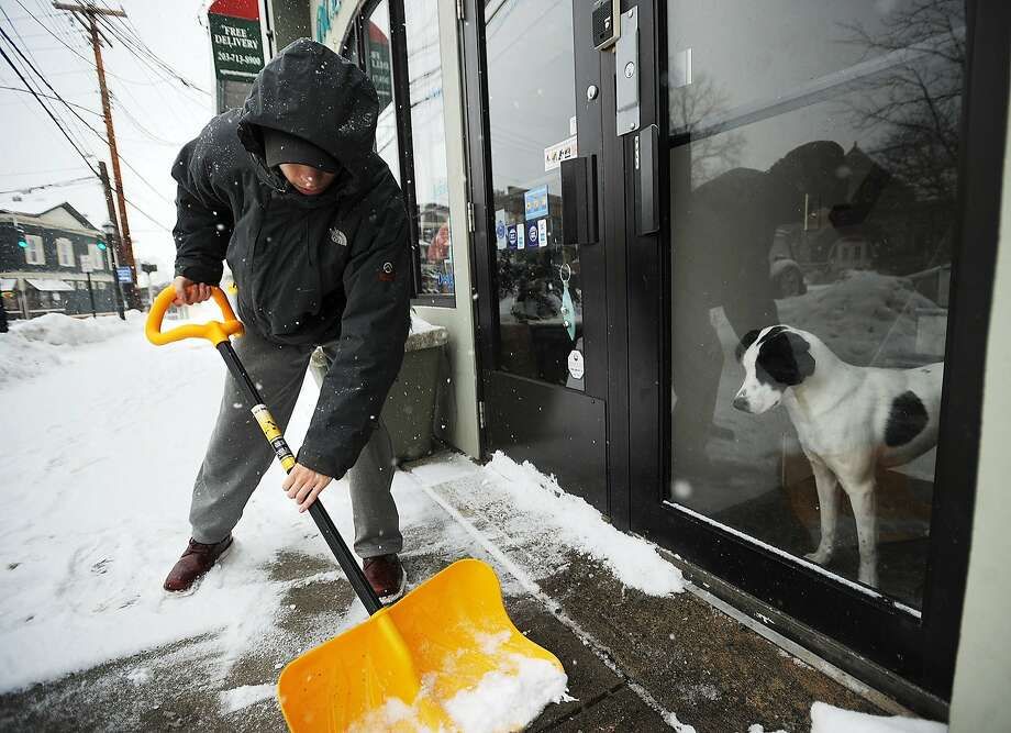 Window watcher:Harper the dog watches in frustration as owner Ryan Lee pushes a snow shovel that's just asking to be bitten outside their apartment in downtown Milford, Conn. Photo: Brian A. Pounds, Connecticut Post