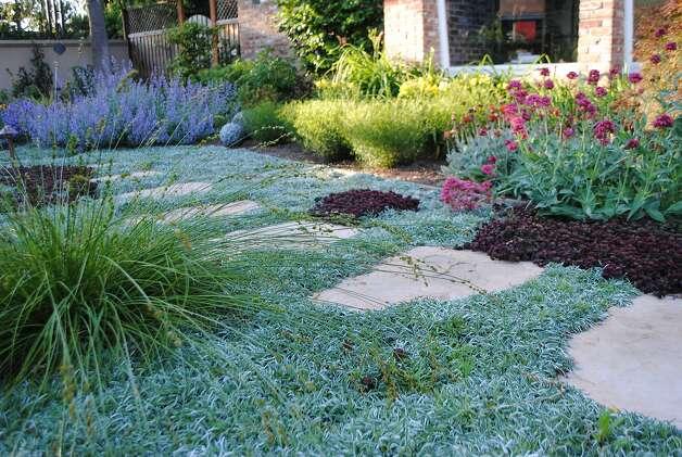 drought landscaping 5 inspiring lawn free yards sfgate