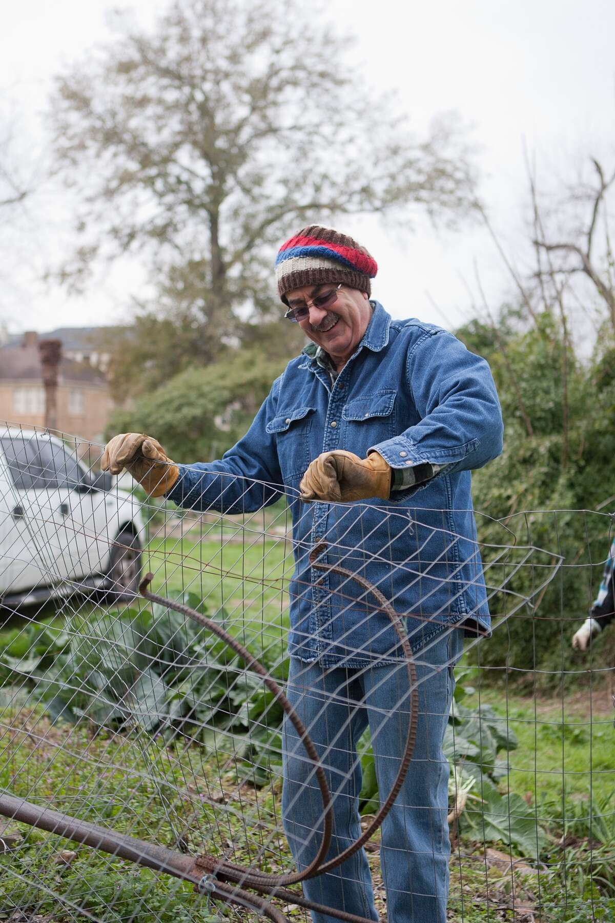 Skip Almoney dismantles a plant cage at the community garden at Mandell Park. The garden and park are slated for renovation.