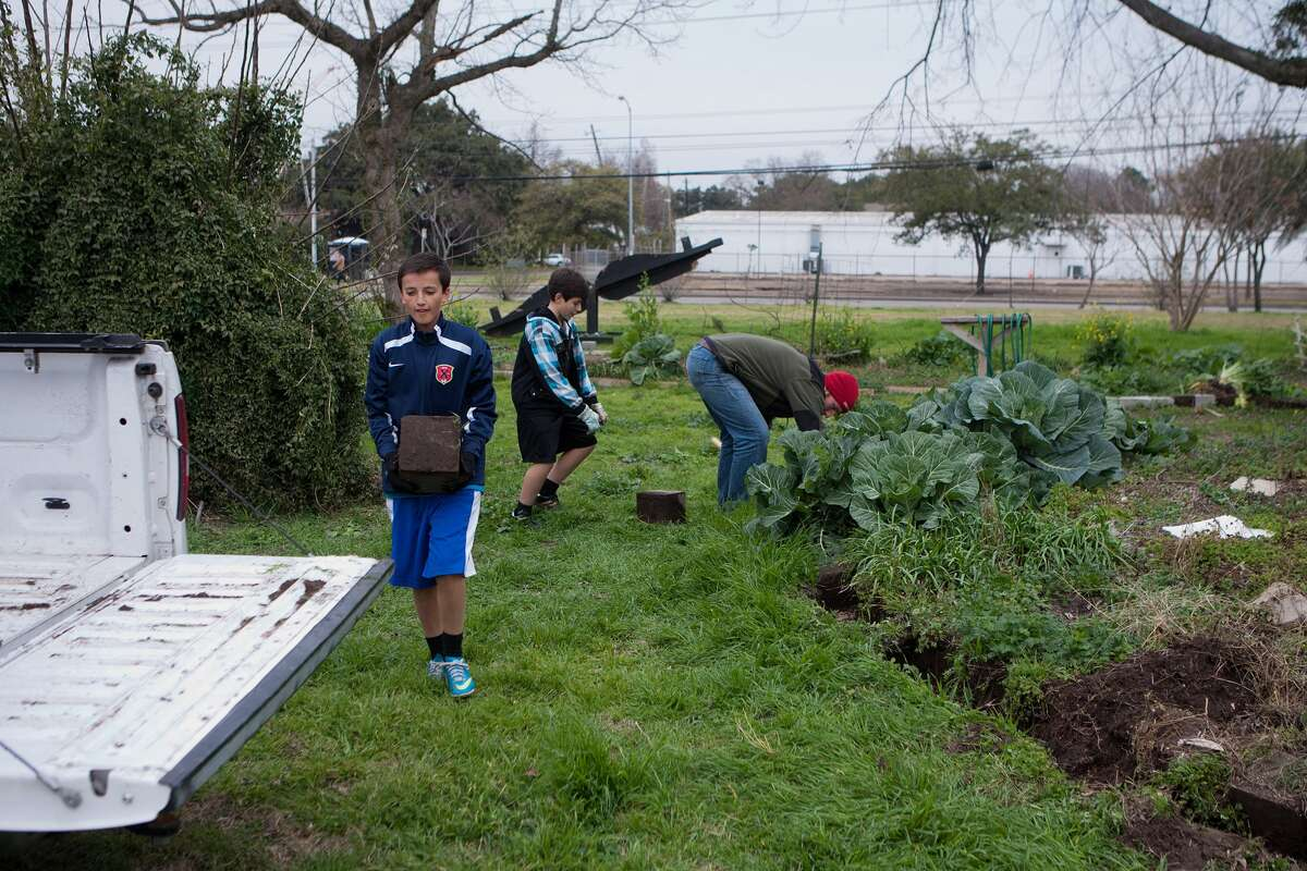 St. Catherine's Montessori pupils Luca Cohen, 13, and Joseph Chavez, 13, and Grant Hughes-Baldwin salvage landscape blocks from Mandell Park in preparation for renovations.