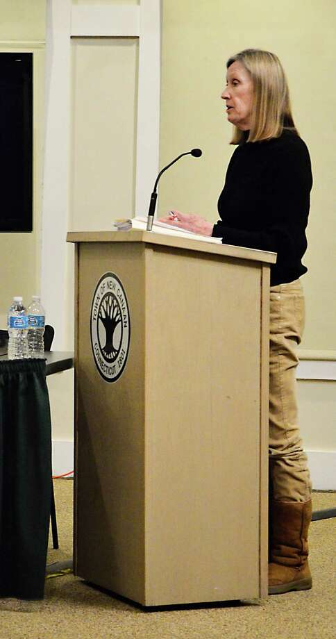Parking Bureau Supervisor Karen Miller presents two new initiatives at a Board of Finance meeting Feb. 11, 2014, at the Nature Center in New Canaan. One of the projects would allow commuters to bypass the parking meter at the town's railroad parking lots and make payments from a smartphone app. Photo: Nelson Oliveira / New Canaan News