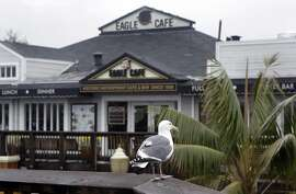 A seagull is perched across from the Eagle Cafe on Pier 39 in San Francisco, Calif. on Thursday, Feb. 6, 2014.