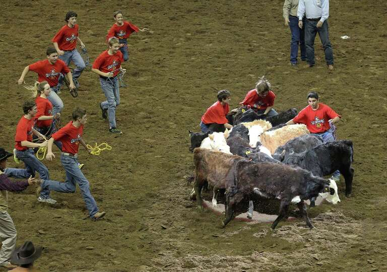 Youngsters run to collect a calf during the calf scramble at the 2014 San Antonio Stockshow and Rode