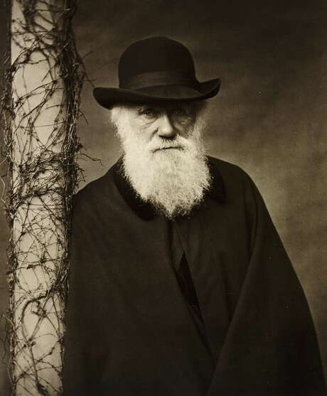 Charles Darwin. Photo: Courtesy Of HBO / English Heritage