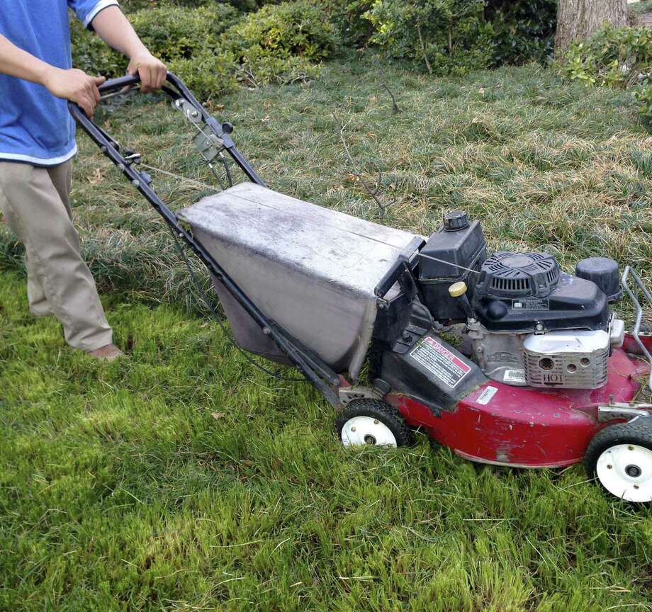 Use a lawn mower or string trimmer to cut back freeze-damaged mondo grass. Photo: Courtesy Neil Sperry
