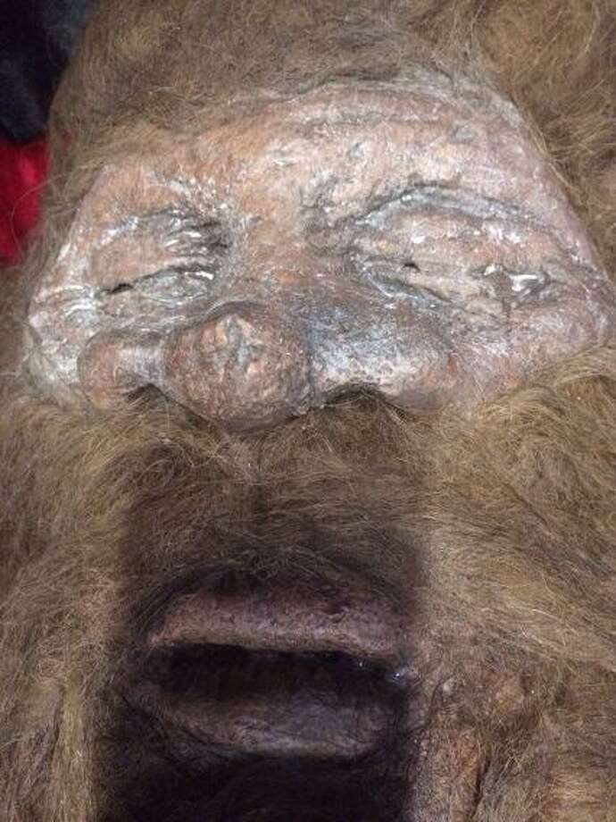 """Rick Dyer, a self-proclaimed """"master tracker"""", brought what he calls a Bigfoot to Alamo Drafthouse Park North on Thursday, Feb. 20, 2014, to show off to those interested enough to pay $10 to see the 2-year-old specimen. Photo: Kolten Parker/San Antonio Express-News"""