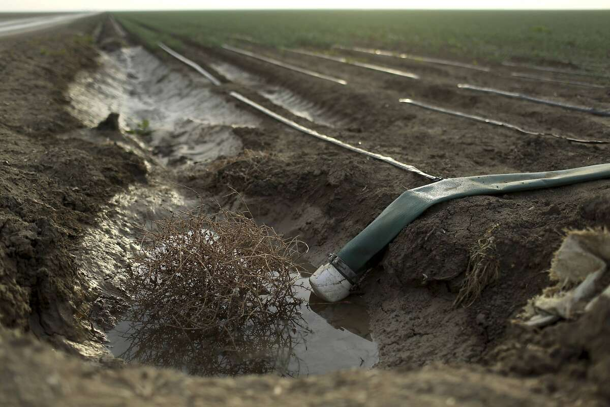 A tumbleweed is seen at an irrigation channel on a farm near Cantua Creek, California in this February 14, 2014 file photo.The worsening drought in California will for the first time force a complete cutoff of federally supplied irrigation water to most farm districts in the state's Central Valley heartland this year, the U.S. Bureau of Reclamation said on February 21, 2014. REUTERS/Robert Galbraith/Files (UNITED STATES - Tags: ENVIRONMENT BUSINESS AGRICULTURE)