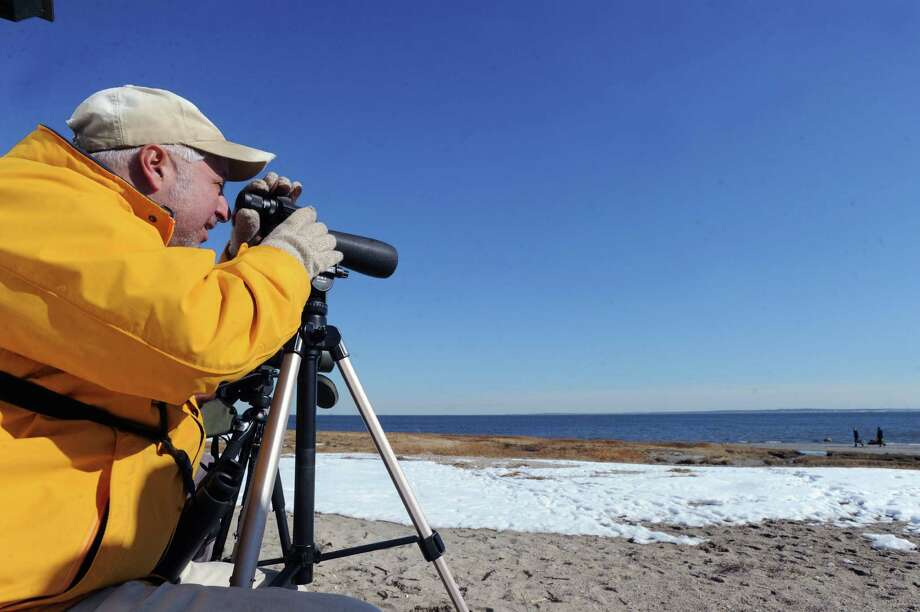 Training his telescope on Long Island Sound, Dan Rottino of East Haddam, Conn., a Connecticut Ornithological Association member, takes advantage of the mild weather in an attempt to spot the Eared Grebe, a water bird not normally seen in this area Rottino said, at Greenwich Point, Saturday afternoon, Feb. 22, 2014. Rottino said Connecticut Ornithological Association members got word that the Eared Grebe was spotted at Greenwich Point last week and organized a Saturday outing in an attempt to confirm the spotting. Unfortunately after nearly seven hours of searching the rare bird for the area remained rare and was not sited. Photo: Bob Luckey / Greenwich Time