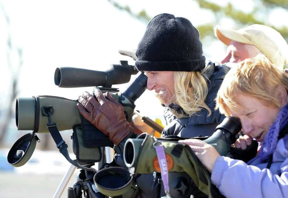 Using a telescope, Annette Cunniffe, left, of Greenwich, a Connecticut Ornithological Association member, along with other members, takes advantage of the mild weather in an attempt to spot the Eared Grebe, a water bird not normally seen in this area Cunniffe said, at Greenwich Point, Saturday afternoon, Feb. 22, 2014. Photo: Bob Luckey / Greenwich Time