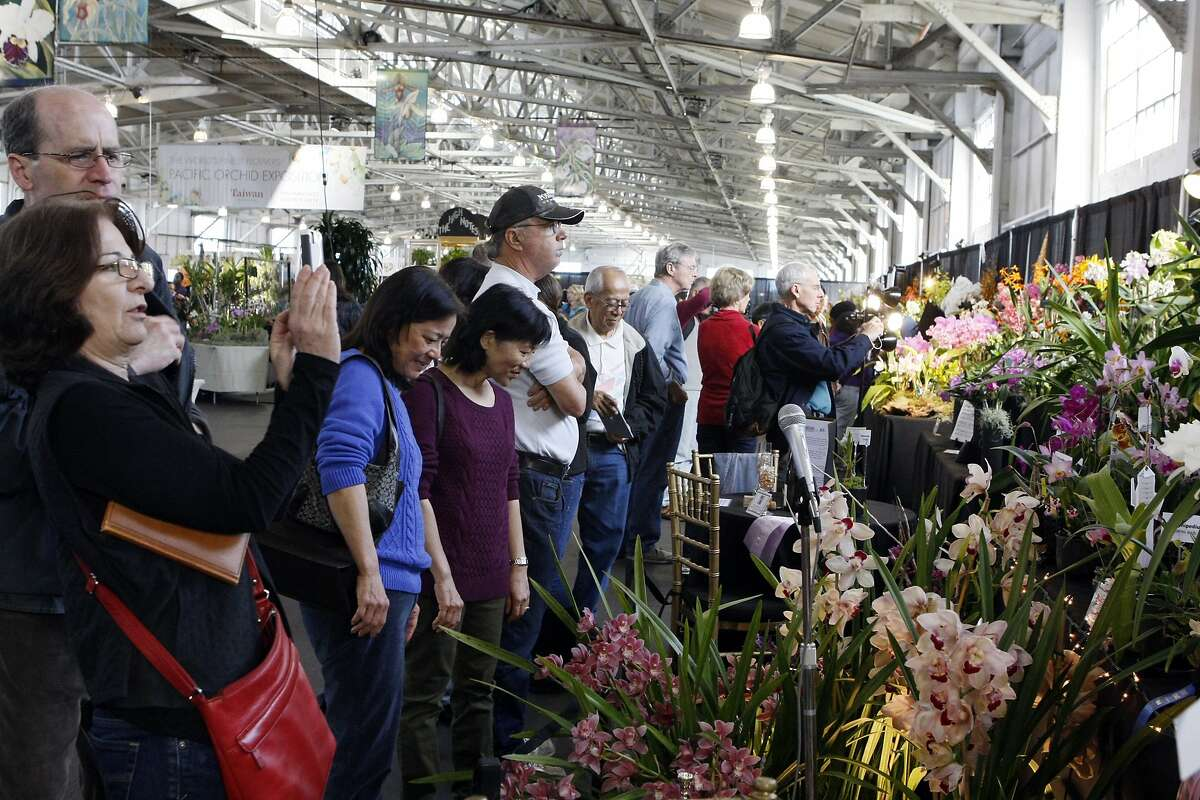 People admire the displays at the Pacific Orchid Exposition at the Festival Pavilion in Fort Mason in San Francisco.