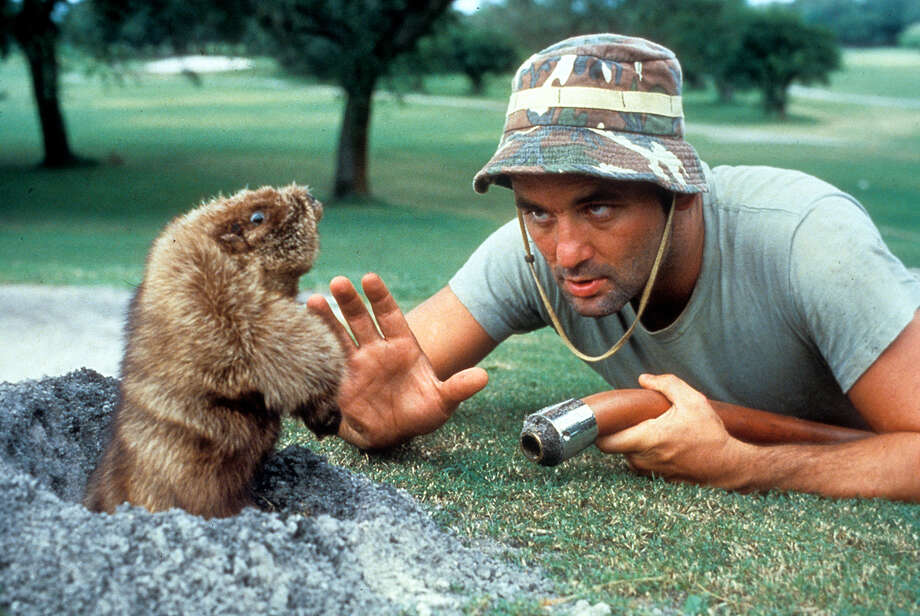 "Ramis' first big directorial hit was in 1980 with Bill Murray in ""Caddyshack."" Ramis and Murray would work together for most of their careers. Photo: Archive Photos, File Photo / 2012 Getty Images"