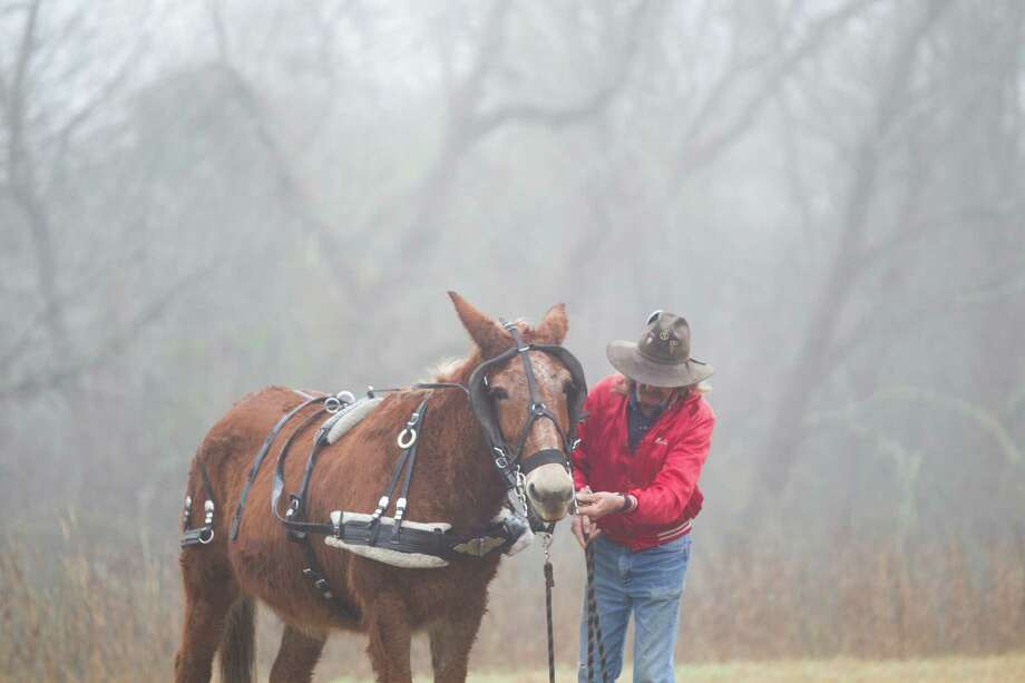 Hollis Dean prepares his horse for an 11-mile ride with the Texas Independence Trail Ride in Alvin. Photo: Marie D. De Jesús, Houston Chronicle / © 2014 Houston Chronicle