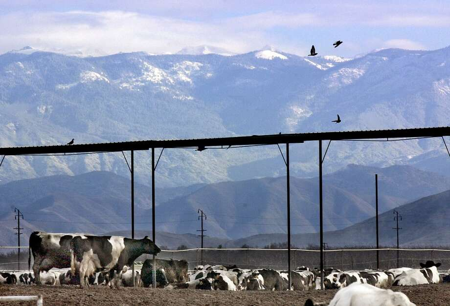 The Coalinga stink