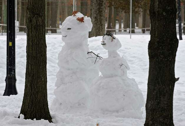 A snow couple is seen amid trees in Saratoga Spa State Park on Tuesday, Feb. 25, 2014 in Saratoga Springs, N.Y.  (Lori Van Buren / Times Union) Photo: Lori Van Buren / 00025881A